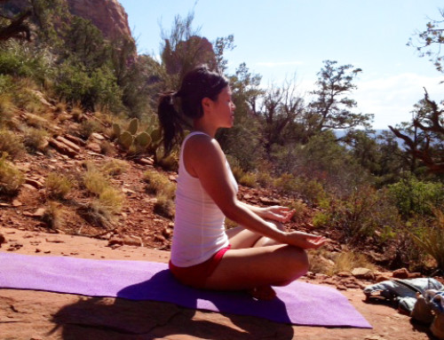 Lesson IX: 5th Limb of Yoga–Drawing the Senses Inward